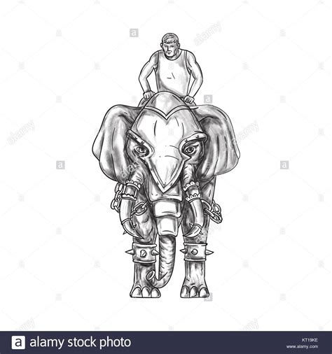 war elephant tattoo war elephant stock photos war elephant stock images alamy