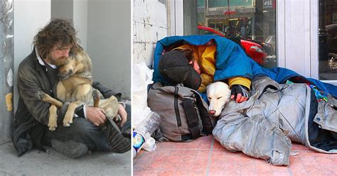 Moving Hacks by 12 Dogs That Love Their Owners No Matter How Little Money