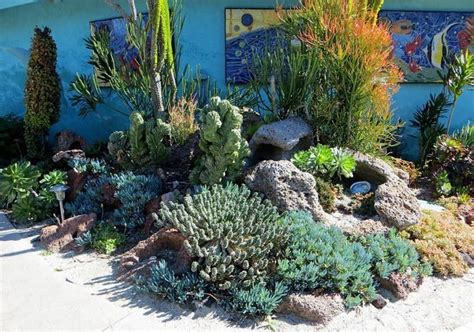 landscaping with succulents and cacti succulent
