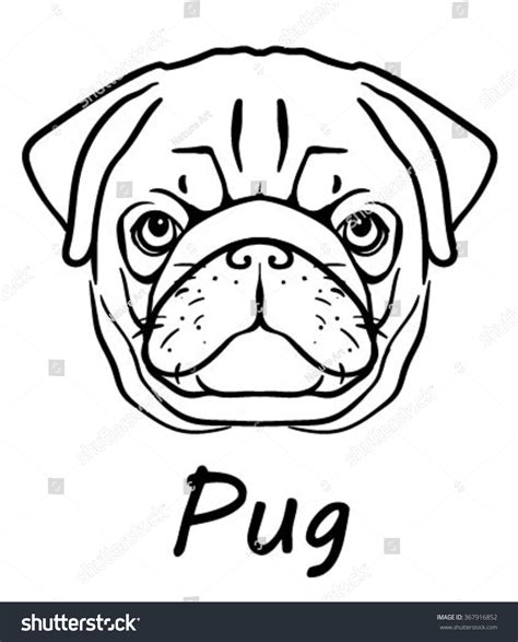 vector image pug dog face on stock vector 367916852