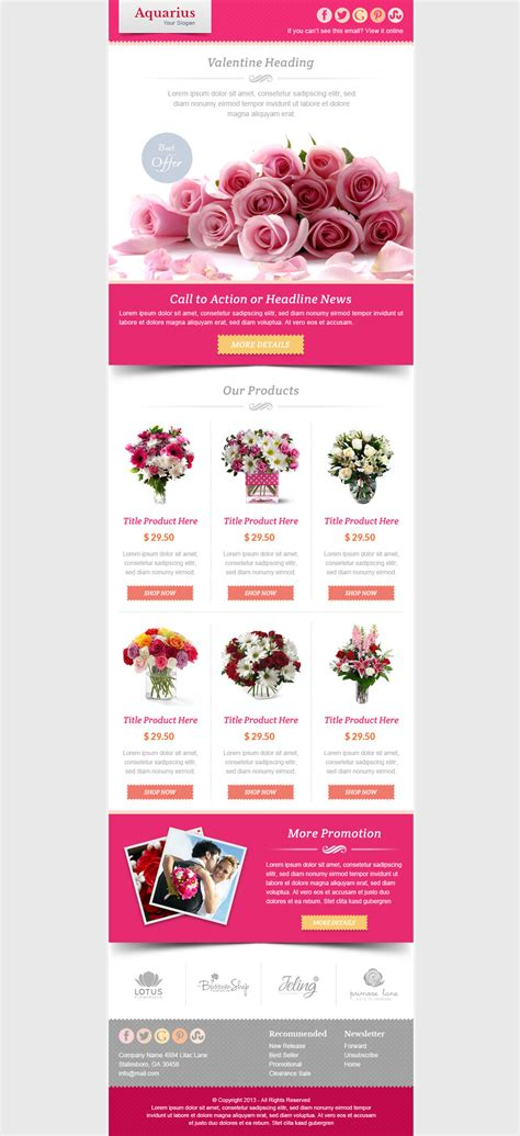 valentines newsletter template email marketing newsletter template by