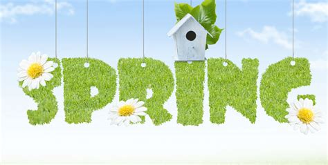 spring cleanup time for a spot of financial spring cleaning news and