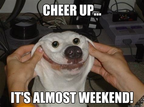 Weekend Dog Meme - cheer up it s almost weekend forced happy dog