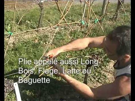 comment tailler une treille de raisin la taille de la vigne chez jardivigne
