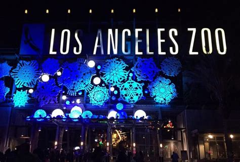 L A Zoo Lights Discount Tickets Spectacular Light Show Zoo Lights Coupons