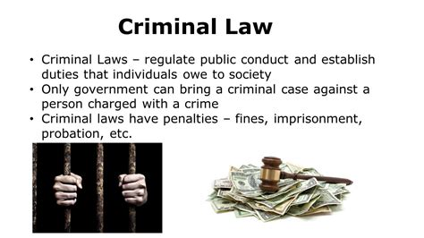 Can You Be A Lawyer With A Criminal Record What Would The World Be Like If There Were No Laws Ppt