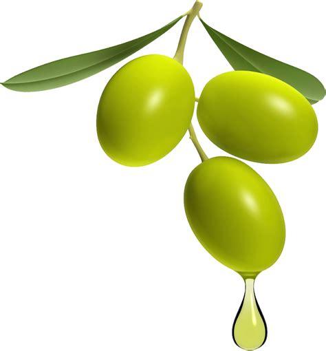 olive clipart olive png transparent image png mart