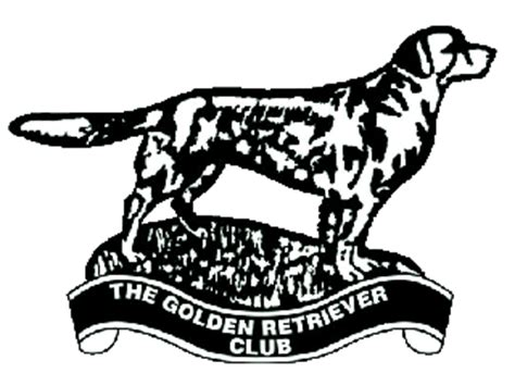 golden retriever club uk index www thegoldenretrieverclub co uk