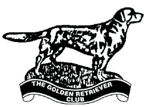 golden retriever clubs index www thegoldenretrieverclub co uk
