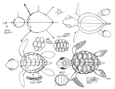 turtle pattern drawing draw a sea turtle by diana huang on deviantart