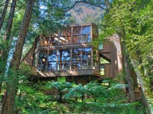 forest home c world of architecture tree house in the forest mill