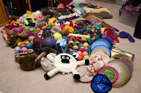 busy toys for dogs toys to keep them busy keeping your entertained when you re not around
