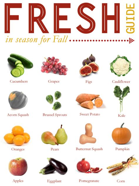 fruit u can cook 16 tasty fall fruits and vegetables fall fruits food