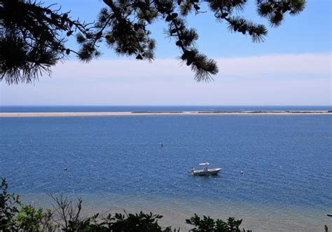 cape cod wildlife center a visit to the monomoy national wildlife refuge cape cod
