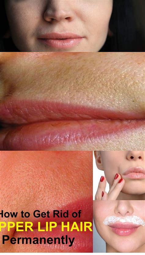 how to remove lip hair best 20 lip ideas on lip hair