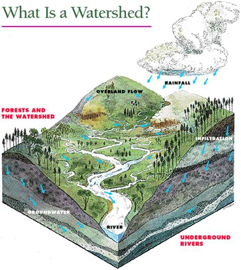 watersheds department of environmental protection
