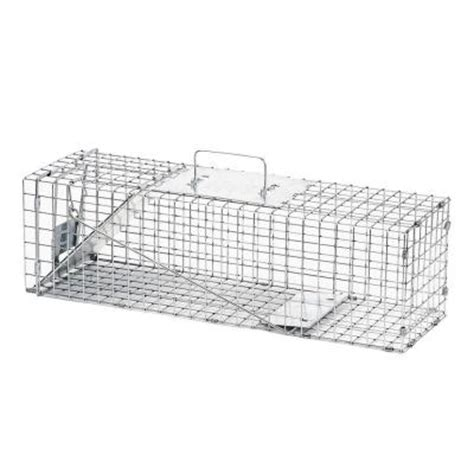 squirrel cage fan home depot havahart medium 1 door live animal cage trap 1078 the