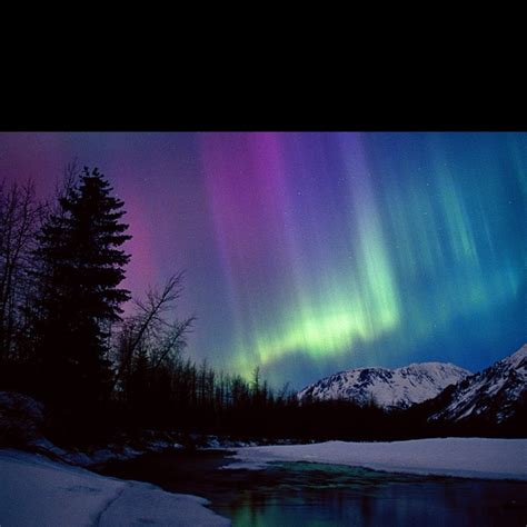 denali national park northern lights pin by c ann stewart on lovely world pinterest