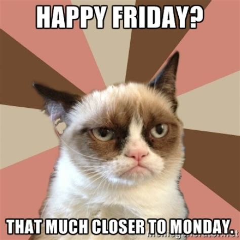 Grumpy Cat Friday Meme - best images collections hd for gadget windows mac android