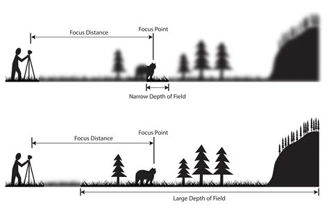 depth of understanding depth of field a beginner s guide