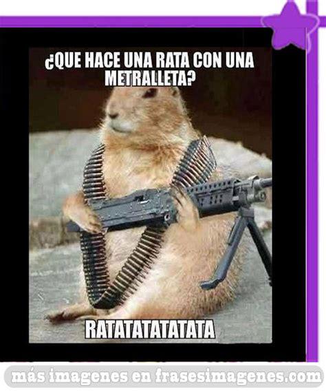 Imagenes Groseras Chistosas Para Facebook | imagenes chistosas con animales imagenes graciosas