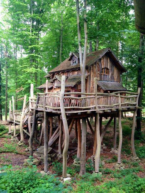 la piantata casa sull albero oltre 25 fantastiche idee su design casa sull albero su