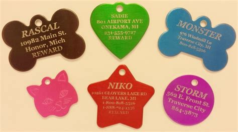 tags for pets cheap pet tags tags and free shipping overnightpettags