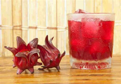 celebrate christmas like a jamaican sorrel drink celebrate like a jamaican sorrel drink recipe dishmaps