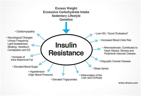 Pdf Insulin Resistance Solution Pre Diabetes Metabolism by How To Diabetes Naturally Diabetes Treatments
