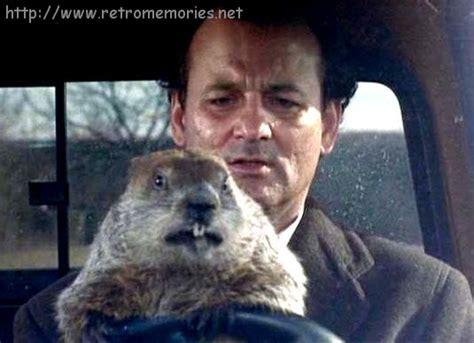 groundhog day polka atrapado en el tiempo groundhog day 1993