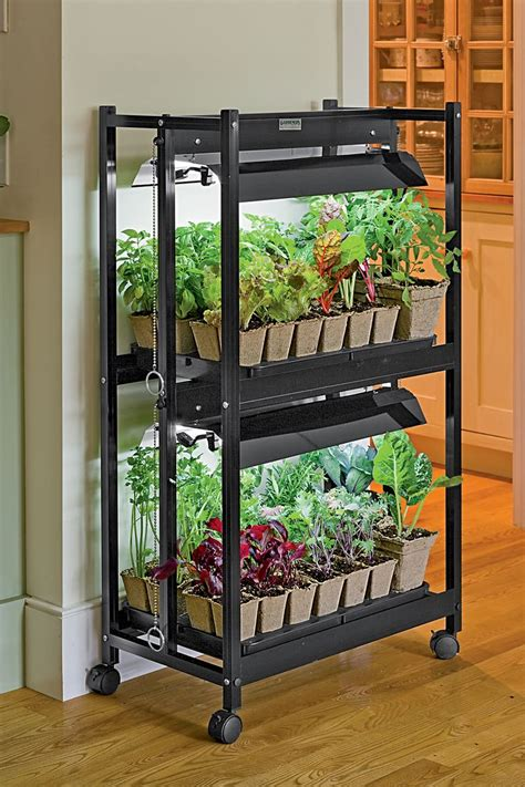 Light Cart For Plants 17 Best Ideas About Indoor Vegetable Gardening On