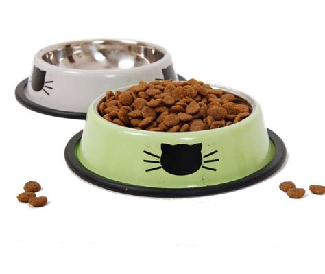 dog food and water bowl