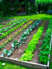 Garden Of Organic How To Grow Organic Food Hartshorn Certified Organic Farm