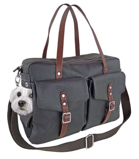 purse dogs 17 best ideas about bag on diy and carrier