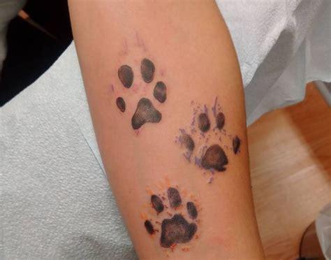 33 pfoten tattoo ideen bilder und bedeutung