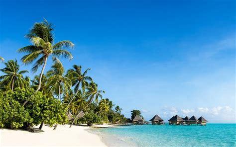 scarica sfondi maldive paradiso spiaggia oceano palme
