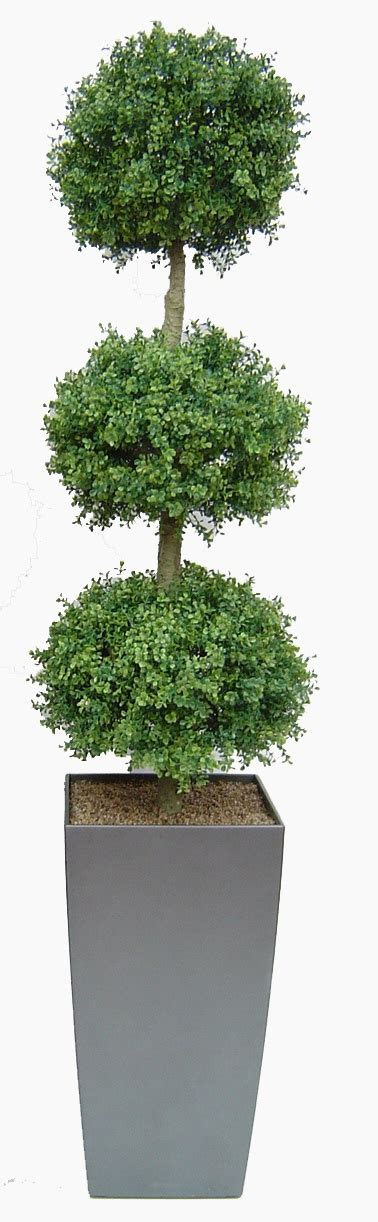 large artificial topiary trees 17 best ideas about topiary trees on topiaries