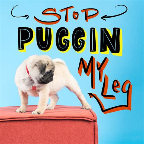 pug pun 13 of the puggin greatest pug puns pet stories pet threads pet threads