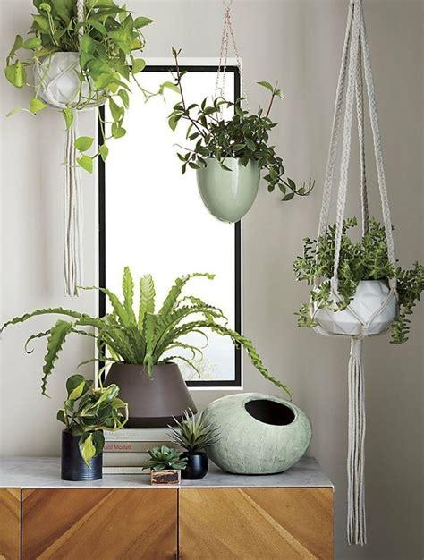 decorar interiores con flores decorar con plantas de interior la casa