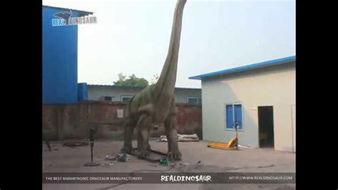 haus 9 x 10 meter 10 meters animatronic brachiosaurus from realdinsoaur