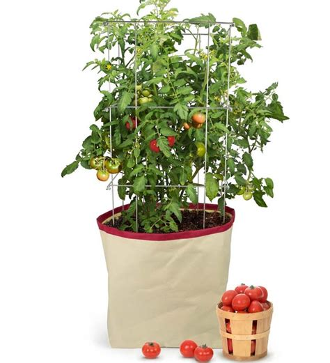Portable Tomato Planter by 17 Best Images About Garden Compost On