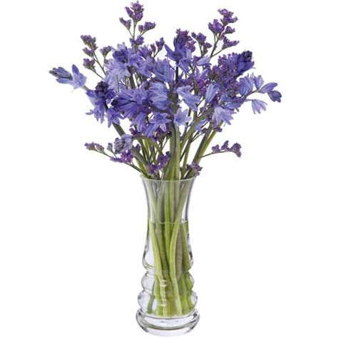Dartington Flower Vase by Dartington Wibble Small Vase