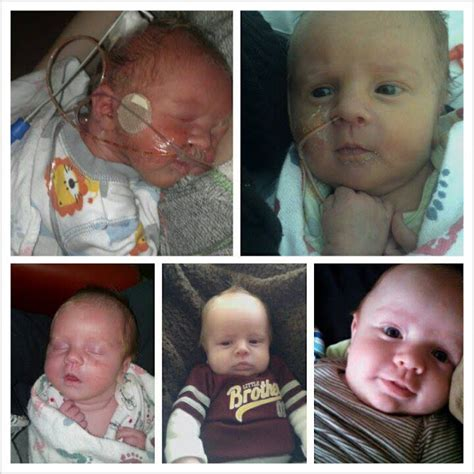 i ve got dibs a donor sibling story books preemie prints information a preemie s story baby