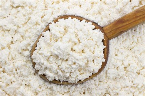 healthy cottage cheese cottage cheese and digestion livestrong