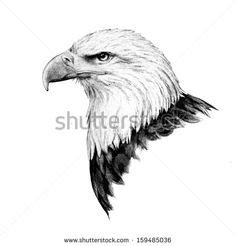 geometric tattoo künstler geometric photoshop drawing of eagle bird drawings