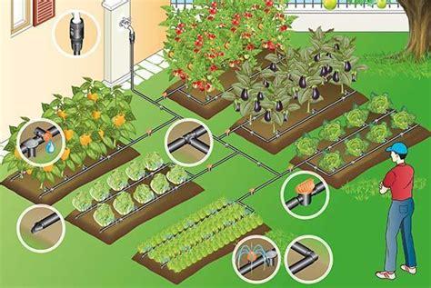 irrigazione giardini fai da te impianto di irrigazione a goccia fai da te