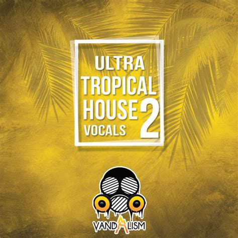 audentity ultimate tropical house house with vocals 28 images house vocals acapella sles