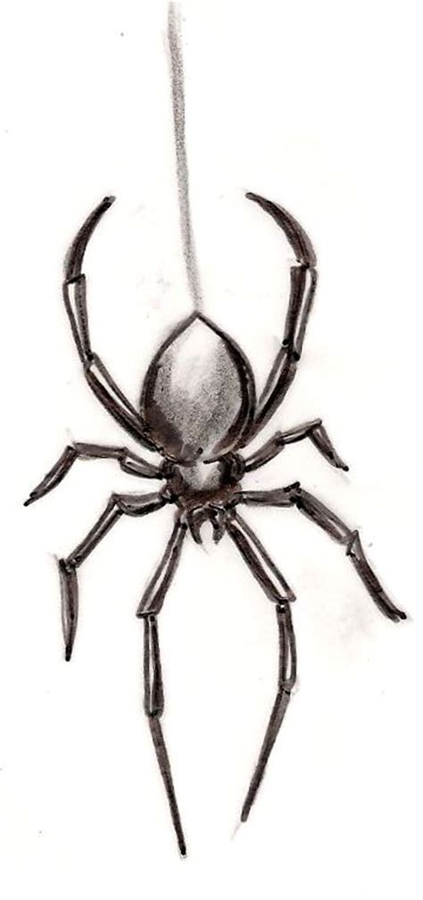 black widow spider tattoo 25 best ideas about spider on web
