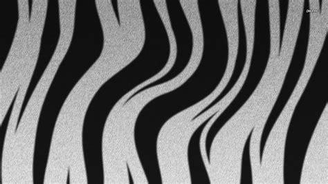 Zebra stripes wallpaper - Digital Art wallpapers - #752
