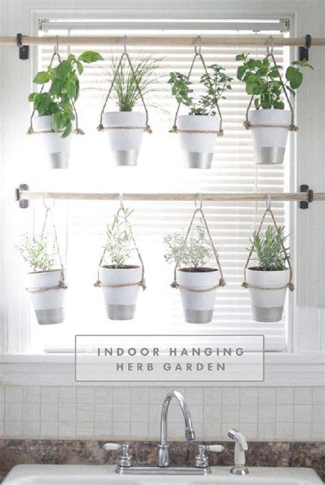 hanging herbs best 25 hanging herbs ideas on pinterest herb garden